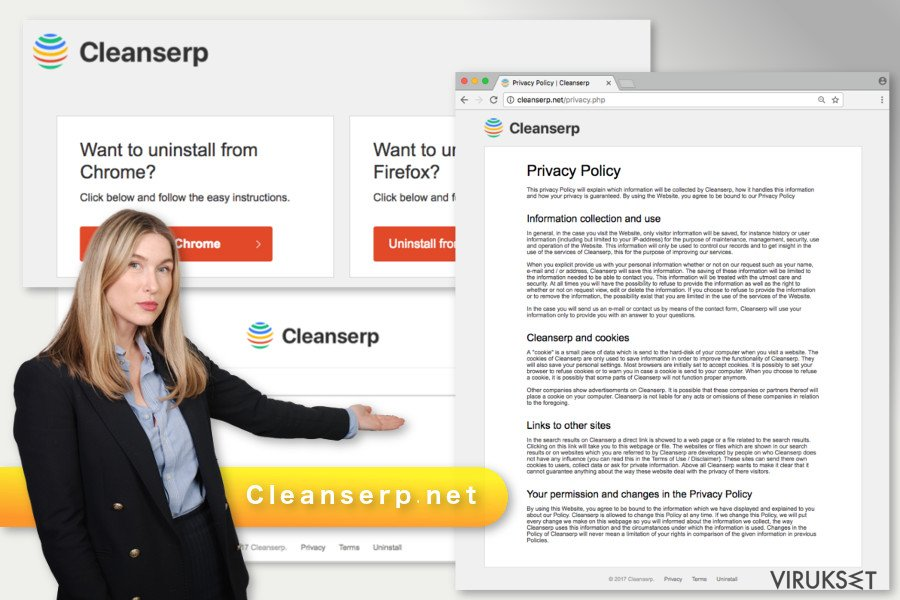 Cleanserp.net viruksen kuva