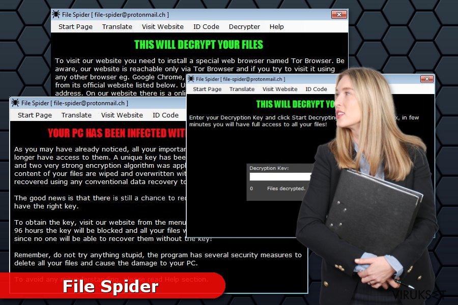 File Spider lunnasohjelma kuva