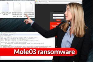 Mole03 lunnasohjelma virus