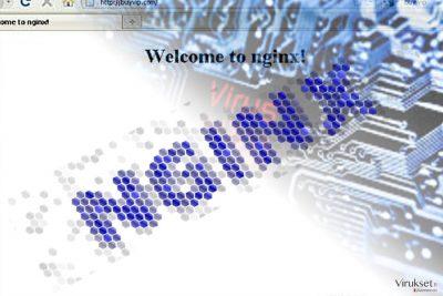 Nginx haittaohjelman kuva