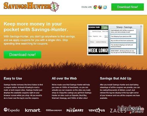Savings Hunter kuvankaappaus