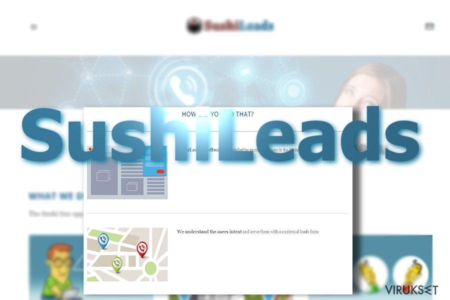 SushiLeads mainokset kuvankaappaus