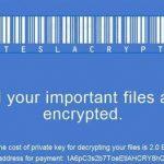 TeslaCrypt virus kuvankaappaus