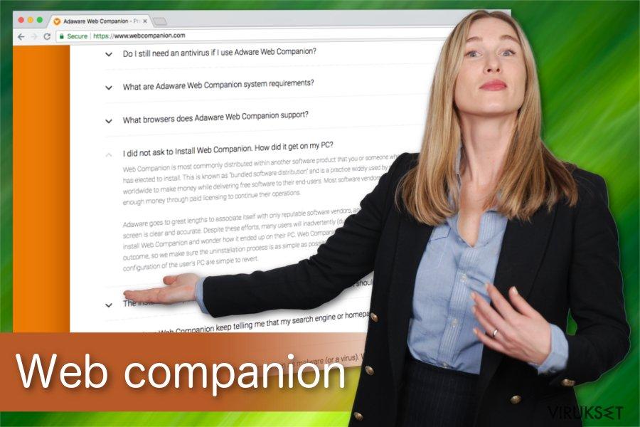 Web companion kuvitus